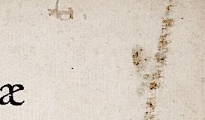 Térence 1541: b tronqué